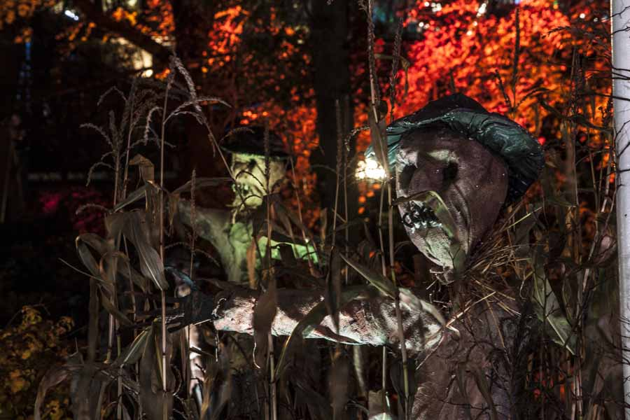halloween_151124_scarecrow2_4