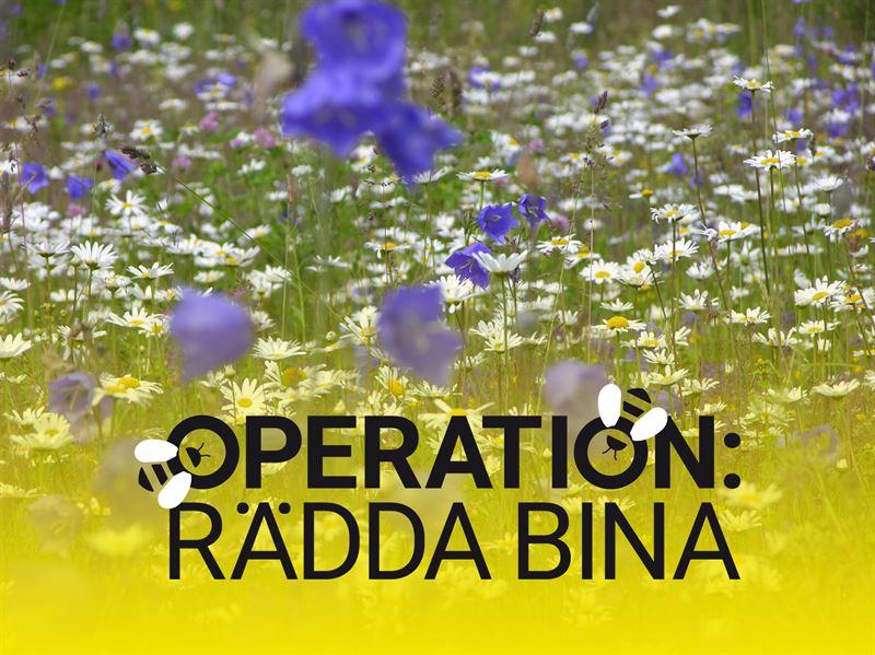 """""""Operation: Rädda bina"""" uppmanar till 10.000 räddningsinsatser"""
